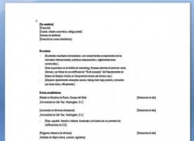 Curriculum En Frances Descarga Plantilla De Cv