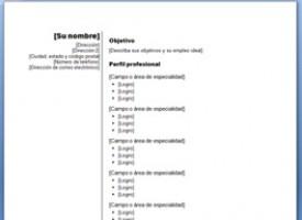 Ejemplo De Curriculum Cronologico Gratis