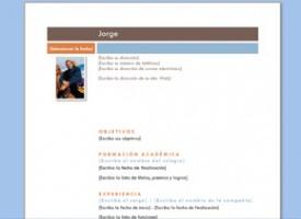 Descargar Modelo De Curriculum Basico