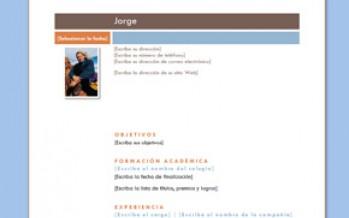 Formatos De Curriculum Vitae Para Descargar