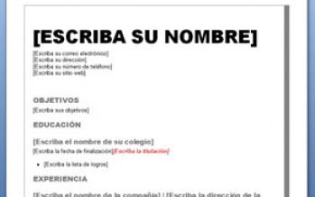 descargar curriculum vitae basico chileno word